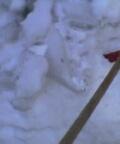 見づらいですが^^;本体を防御する氷の塊 元は屋根から落ちた氷