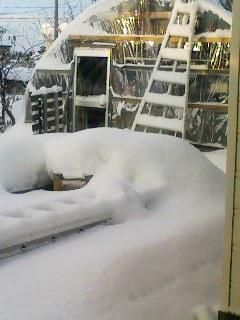 それなりに積雪