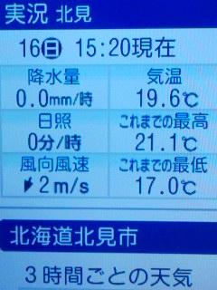 昨日は31℃でした
